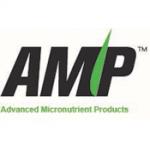 AMP Logo_web
